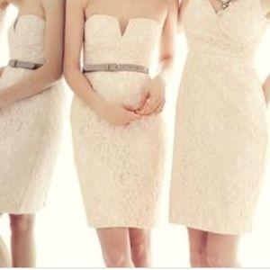 116788c2011 J. Crew Dresses - ✨Never Worn✨ J Crew Cathleen Dress in Leavers Lace